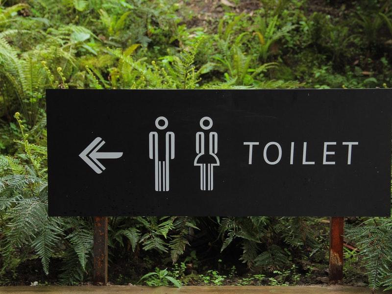 Cara dan Tips Mendesain Toilet Minimalis